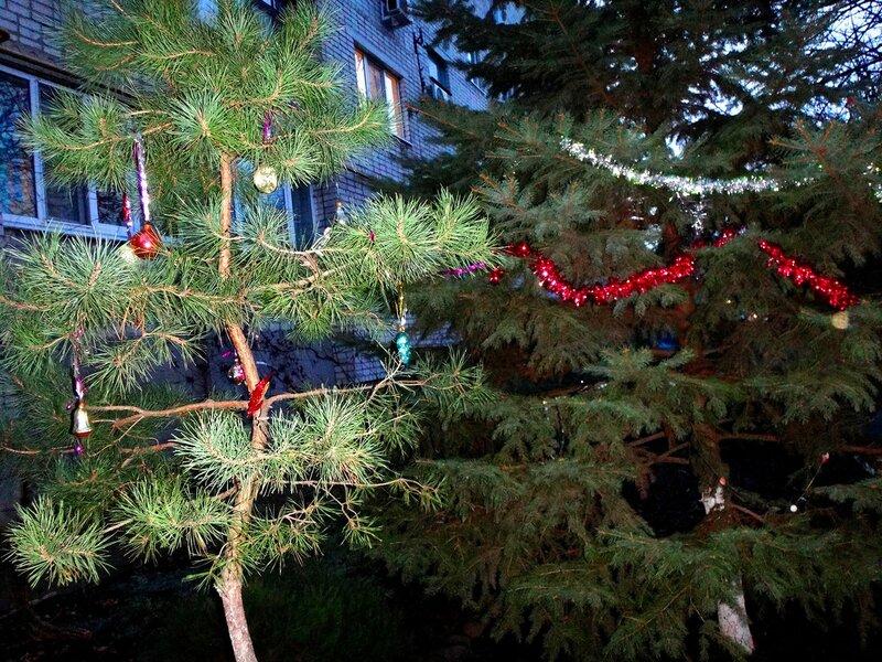 Мотив Новогоднего праздника (21).JPG