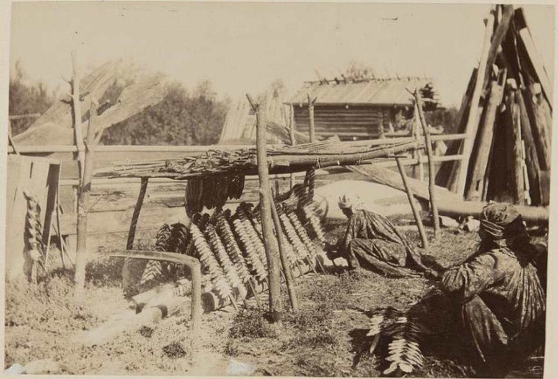 Поселение на реке Калганак