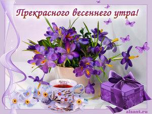 https://img-fotki.yandex.ru/get/508911/131884990.e5/0_15d272_e82a14d8_M.jpg