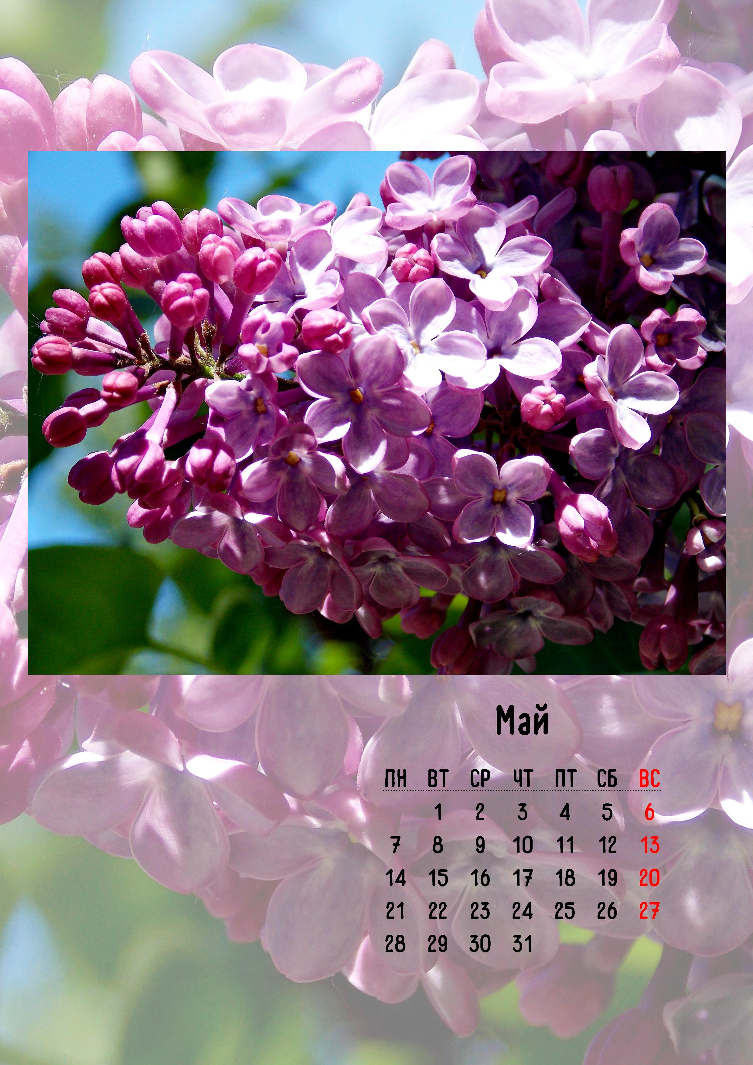 6. Календарь май.jpg