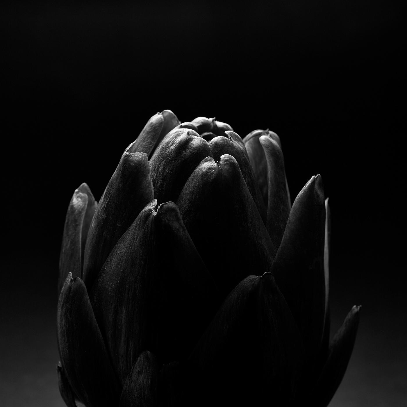 Sophisticated simplicity / фото Maris Kiselov