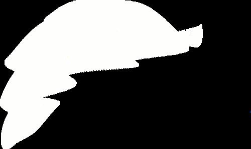 белые вуали