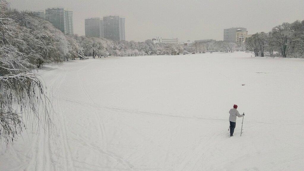 Снегопад в Москве border=