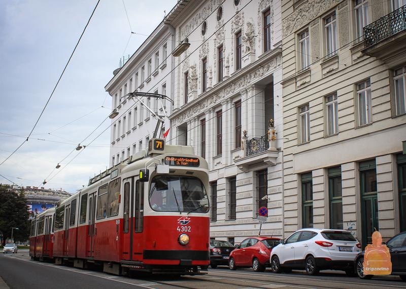 Трамвай №71 идет до Бельведера