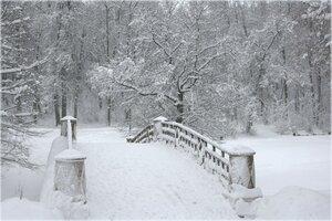 Красота зимы......