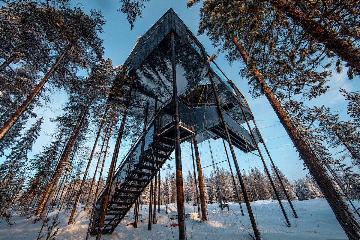 Элитные апартаменты на дереве в Швеции