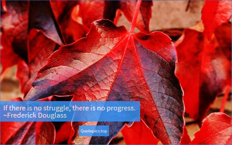If there is no struggle, there is no progress. ~Frederick Douglass