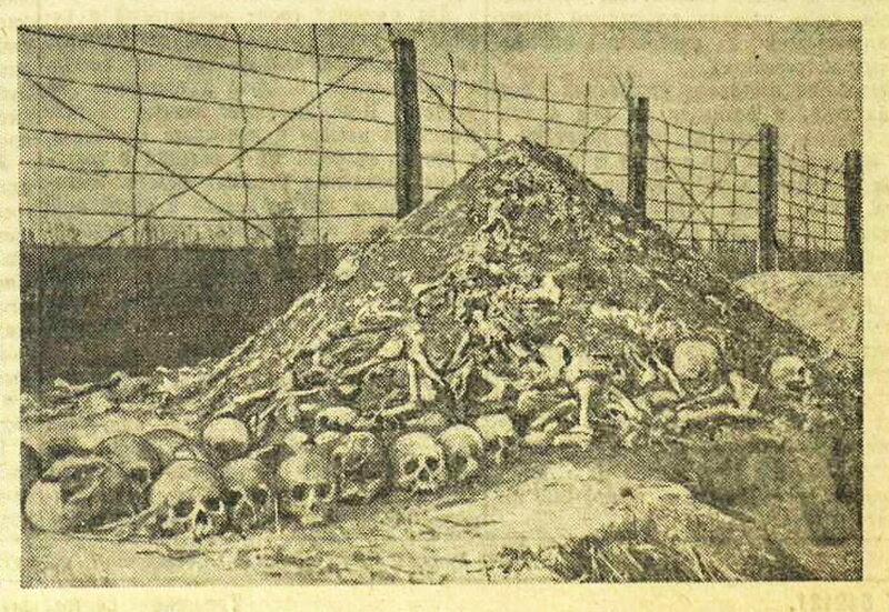ЛАГЕРЬ УНИЧТОЖЕНИЯ НА МАЙДАНЕКЕ, «Красная звезда», 16 сентября 1944 года