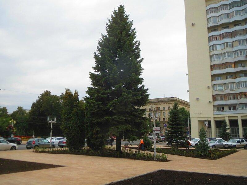 Ремонт молодогвардейской и снос ДС 189.JPG