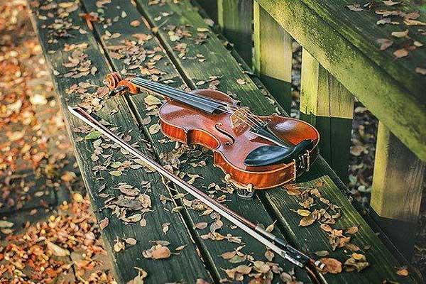 Открытки. С Днем Музыки! Скрипка на осенней скамейке