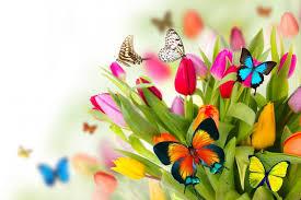 Открытки. С днем инженера-механика. Цветы и бабочки