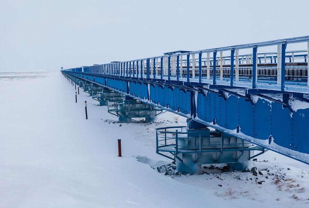23. Мост был построен в рекордные сроки: всего за 349 дней.
