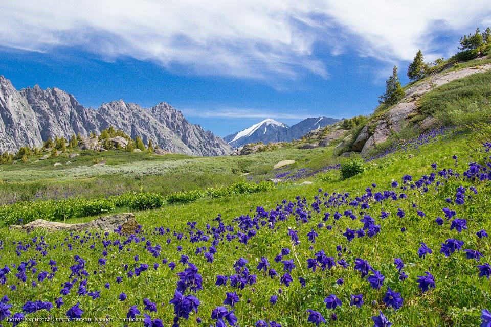 На территории Усть-Коксинского района располагается Белуха (4 506 метров) — самая высокая точка респ