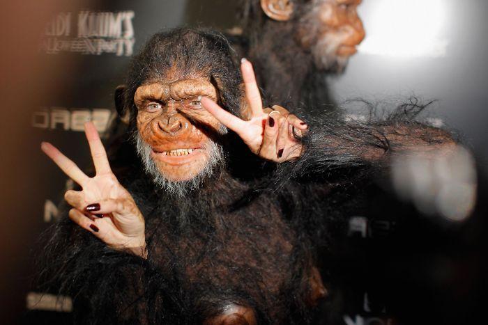 2011 год: жительница планеты обезьян    А на еще одной вечеринке в честь Хеллоуина Хайд
