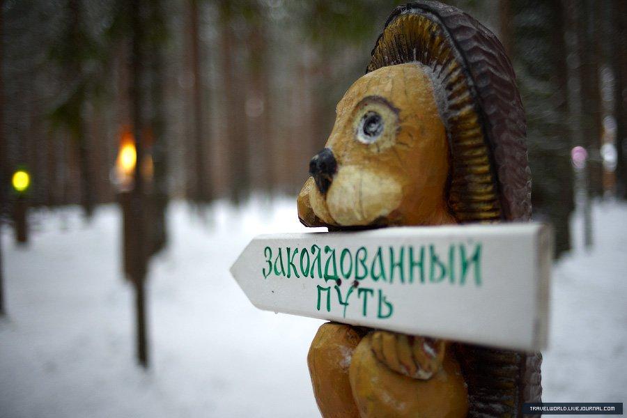 Взрослый входной билет стоит 880 рублей (экскурсия, дом Деда Мороза, почта, оранжерея, 2 катания на