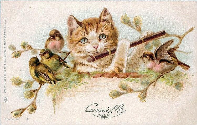 Кого открытка, старинные открытки животные