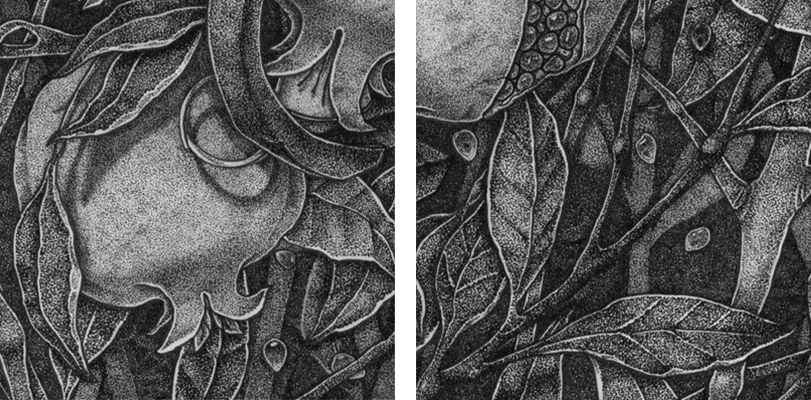 26 Incredibly Detailed Dotwork Illustration Projects