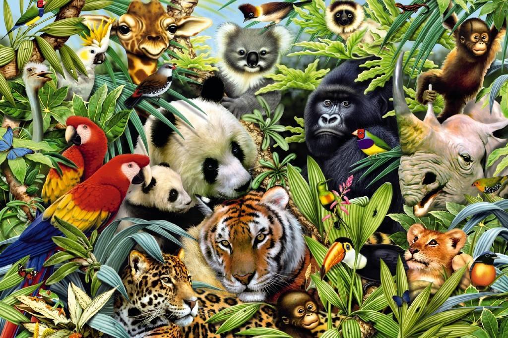 картинки про животных на одной картинки много качественное