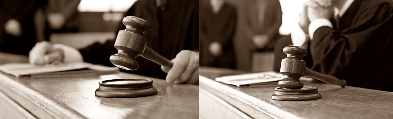 Людмила Виноградова подчеркнула, что гражданин не может быть лишен своего имущества иначе как по решению суда, однако, у него без суда могут отобрать ребенка, ценность которого не измеряется деньгами.