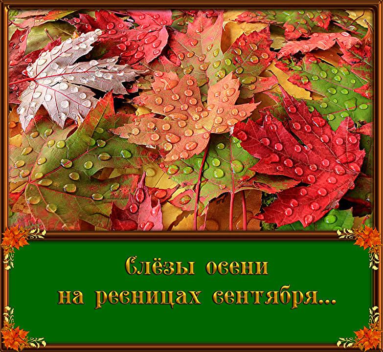 Статусы Осень