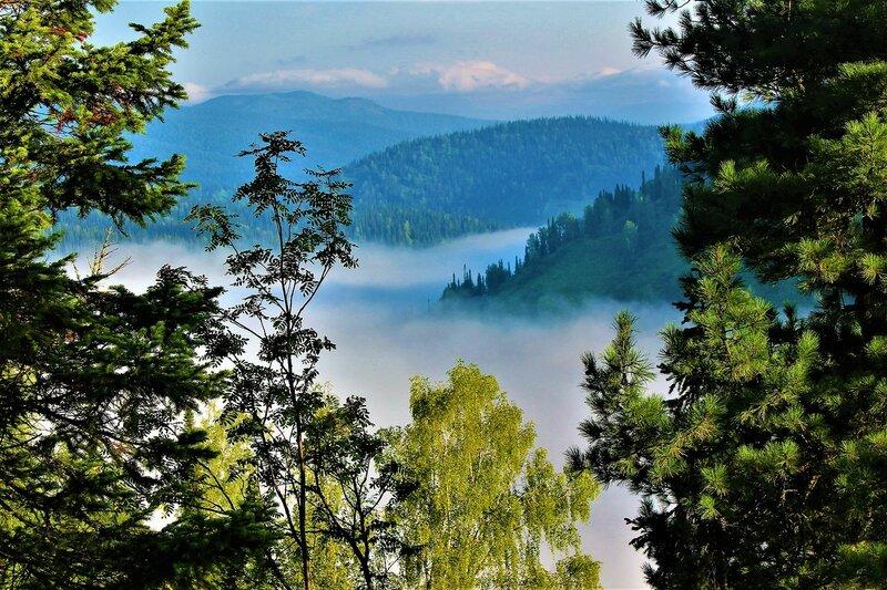 IMG_7130.JPG Туман над речной долиной