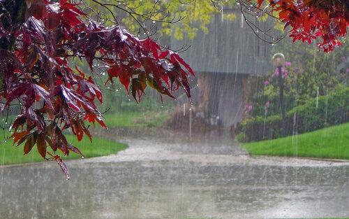 ВКрыму ожидаются сильные ливневые дожди— МЧС