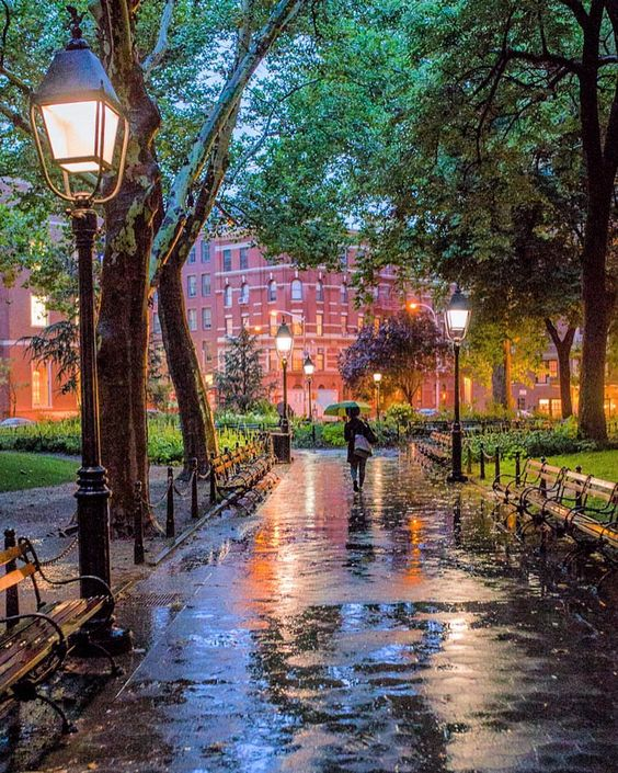 Washington square park NYC.jpg