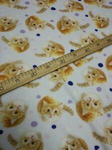 Флис АНТИПИЛЛИНГ котята  2-х сторонний, Digital, ширина 180см, плотность 200-220гр/м, Цена 430 рублей