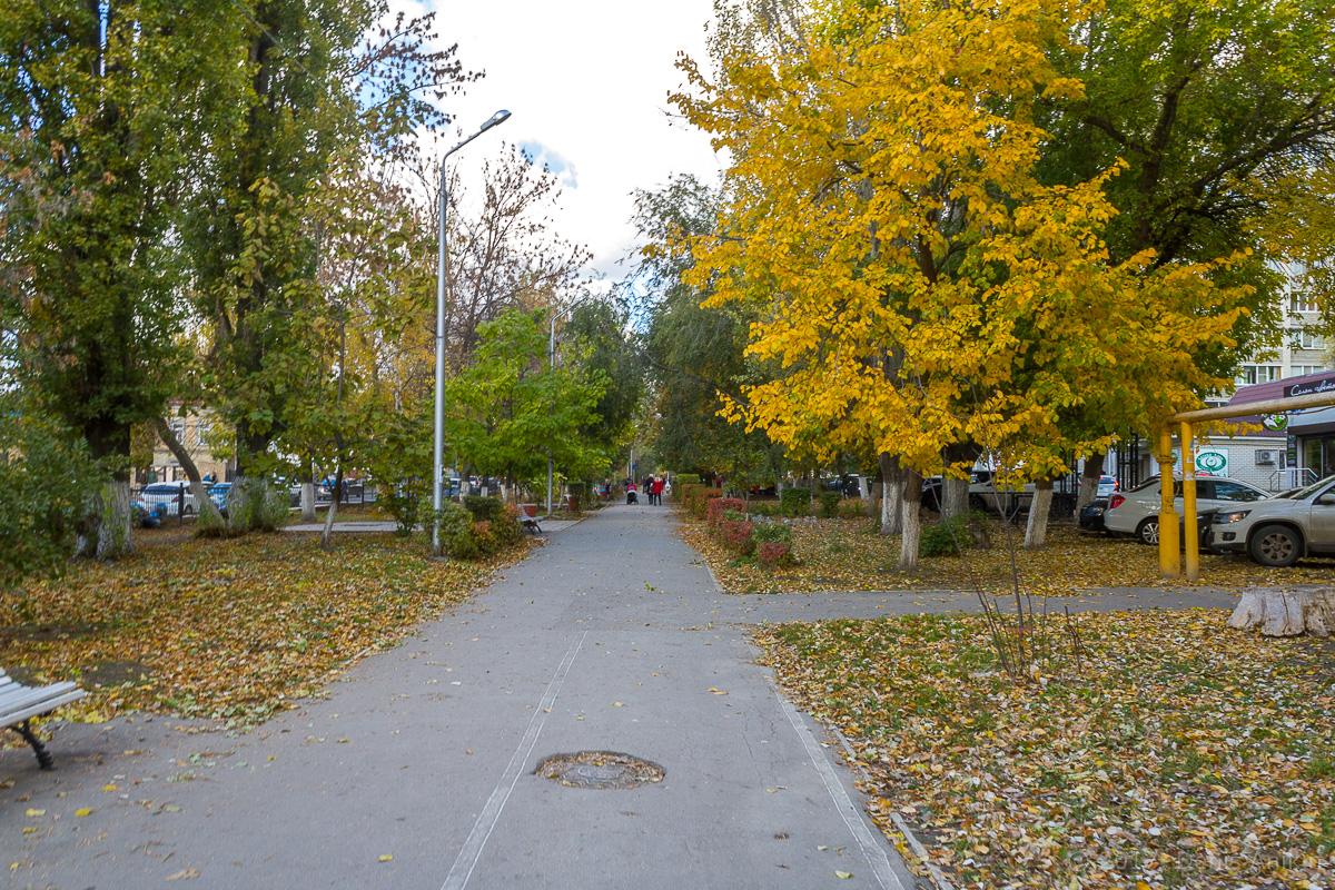 Саратов 2 садовая осень фото 9