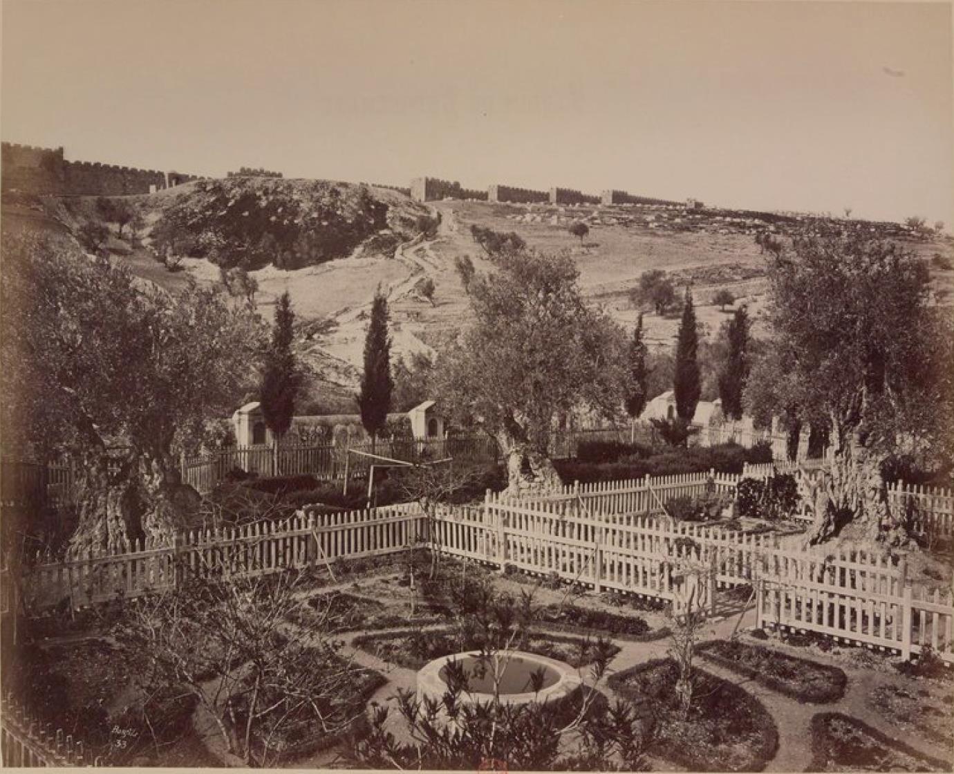 23. Иерусалим. Гефсиманский сад