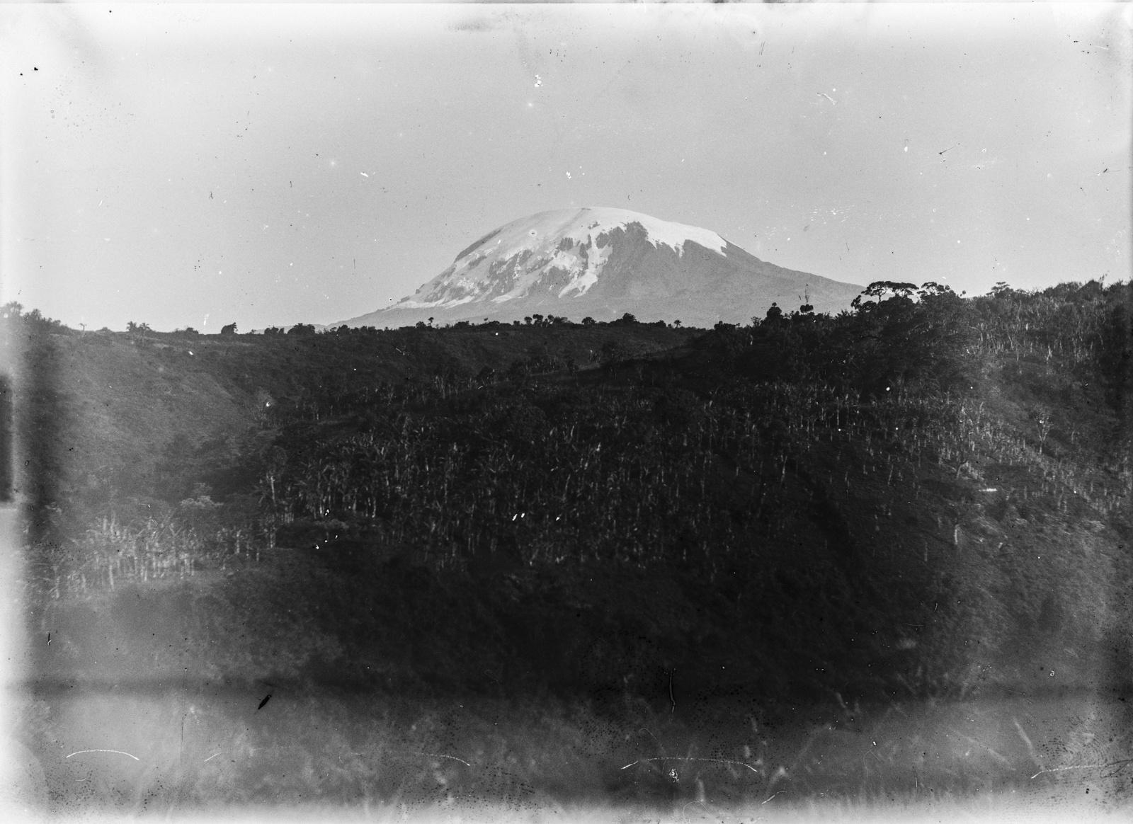 104. Банановые плантации в районе Килиманджаро