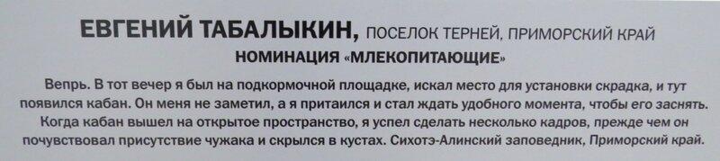 https://img-fotki.yandex.ru/get/509292/140132613.6a6/0_24108d_13f228ea_XL.jpg