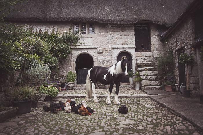 english-countryside__700.jpg