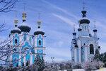 Блгв. кн. Александра Невского в Богородичном 05.01__19.jpg