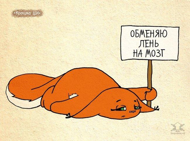 0 180069 f08dc539 orig - Крошка Ши  Леси Гусевой