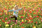 9771_A-happy-girl-in-a-field-with-colorful-tulips.jpg