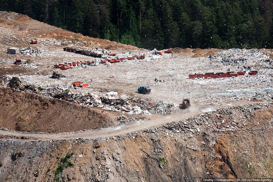 В России ежегодно производится около 3.8 млрд тонн всех видов отходов. Количество твердых бытовых от