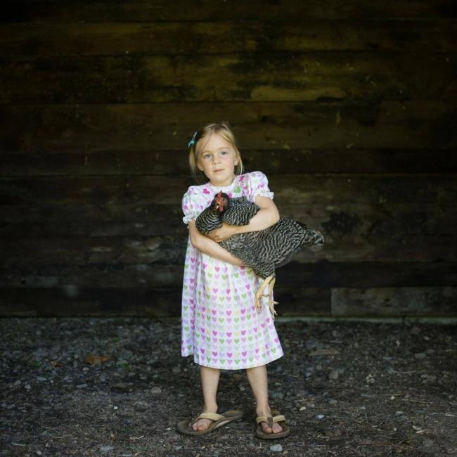 © ThisWildIdea/facebook     Эддисон живет ссемьей намаленькой ферме идружит скурицами