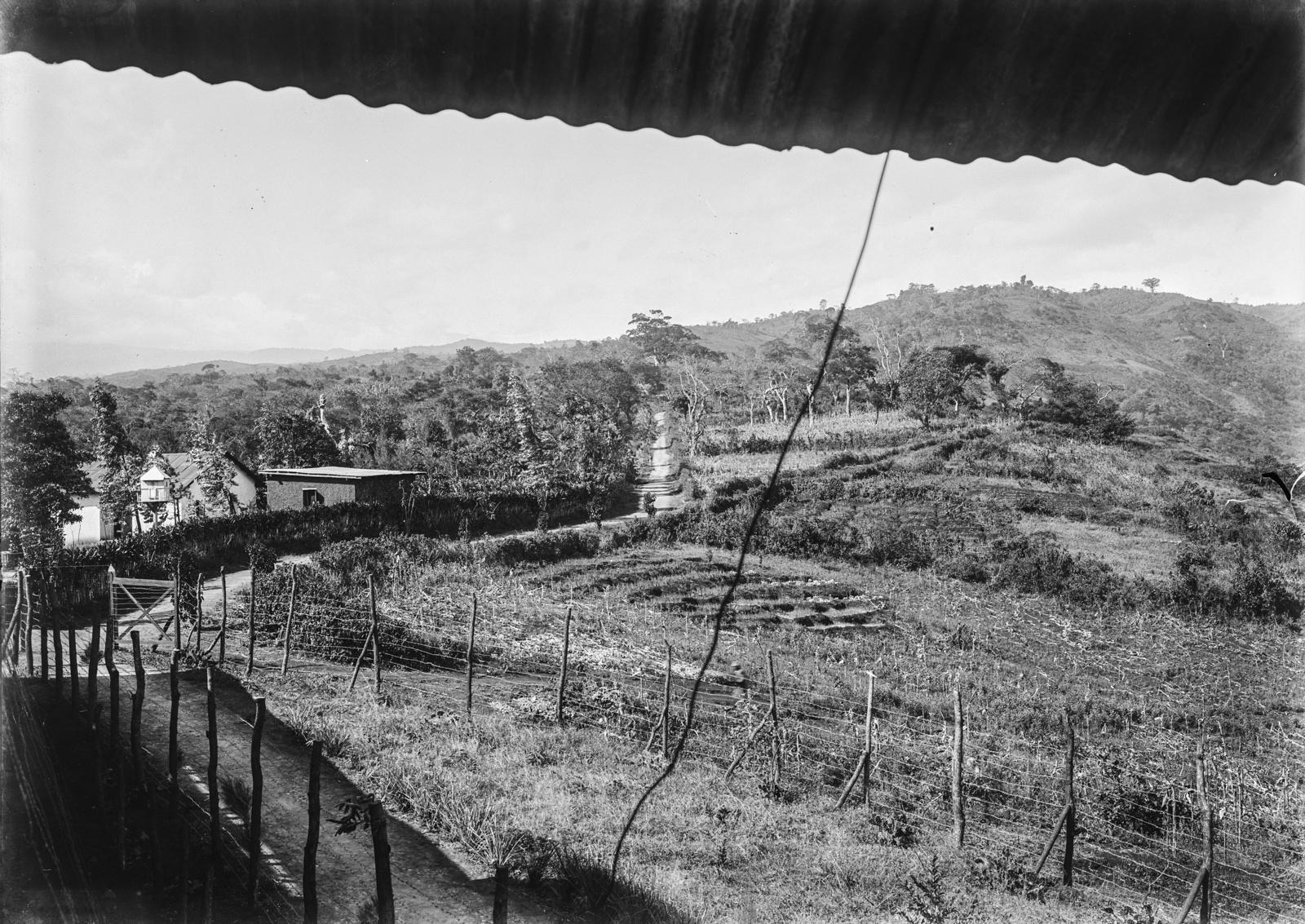 115. Станция немецкого общества Восточной Африки (ДОАГ) в Моши. Сад станции с частью пахотной земли