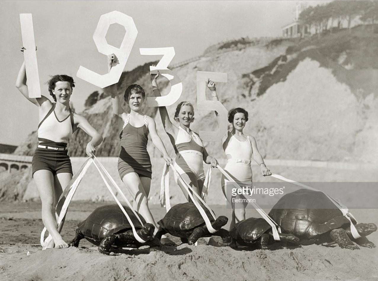 1934. Грейс Шварц, Тельма Итон, Фрэнсис Двинг и Бетти Леонард выгуливают гигантских морских черепах на океанском пляже в Сан-Франциско