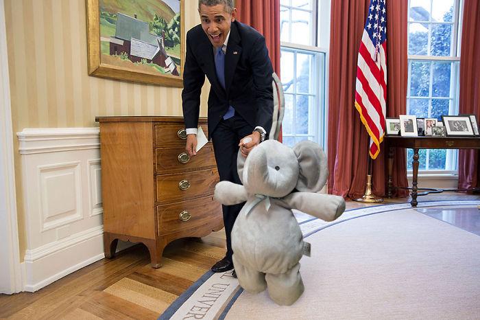Слон посетил Барака Обаму в Овальном кабинете Белого дома.