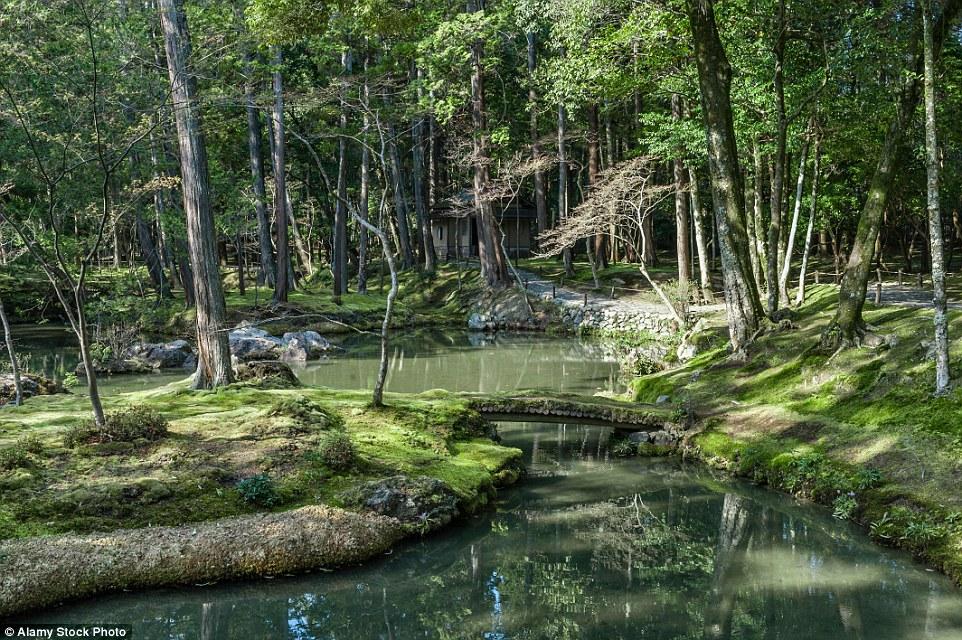 Лучшее время для посещения монастыря – середина июля, когда парк обильно зарастает мхами, и осень, к