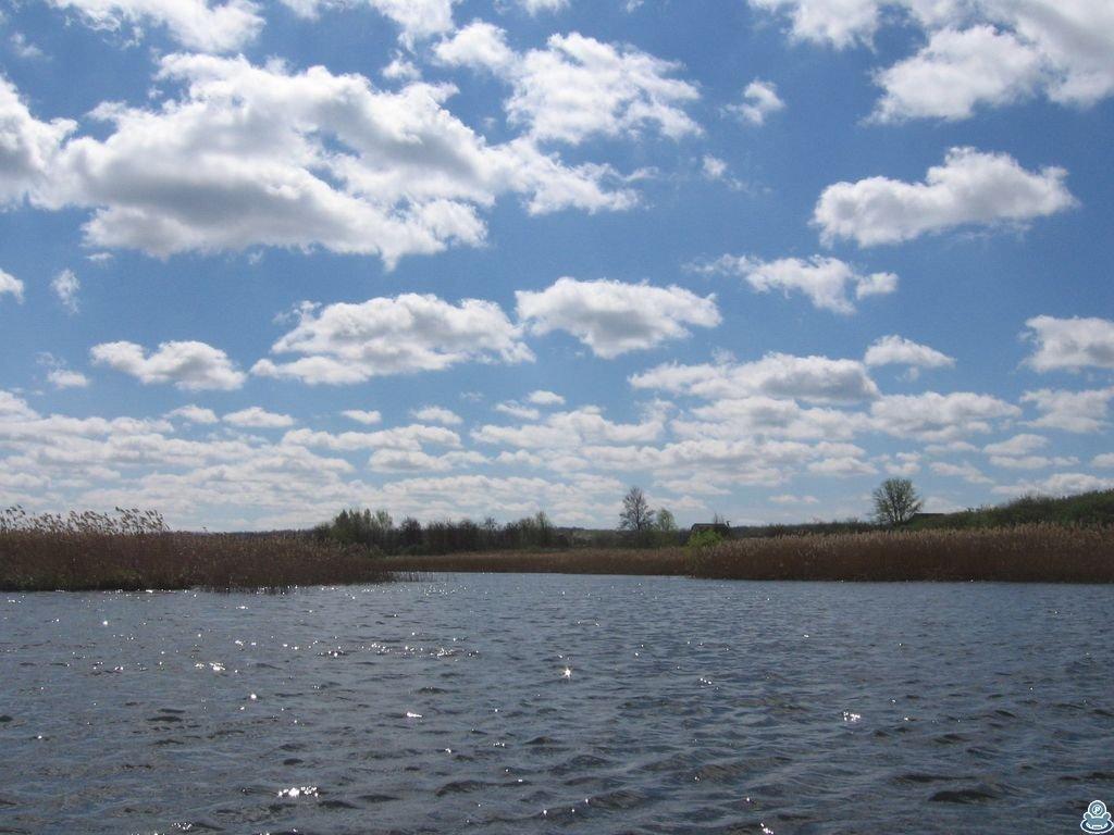 Сплав по реке Боромля