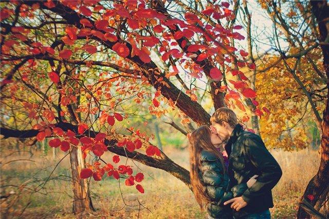 Картинки зима лето осень одним словом