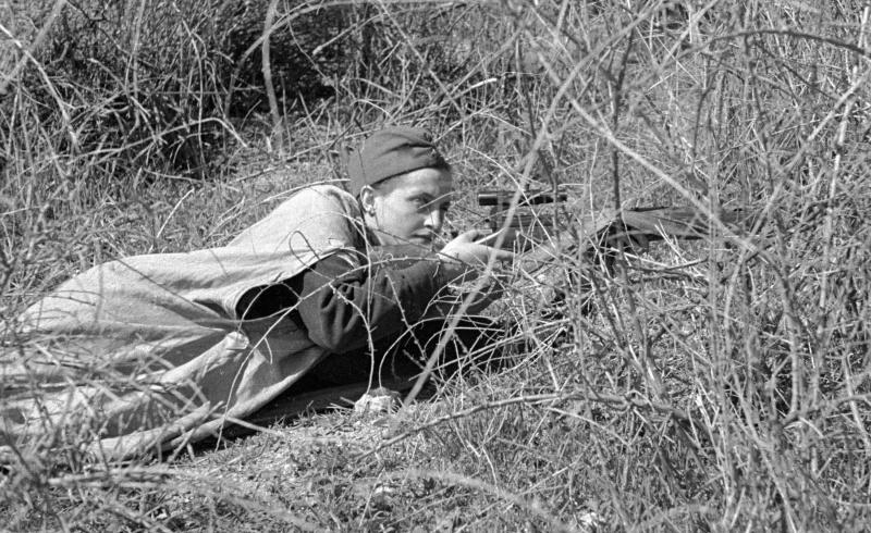 Снайпер 54-го сп 25-й сд Приморской армии Л.П. Павлюченко. Под Севастополем. 06.05.42.jpg