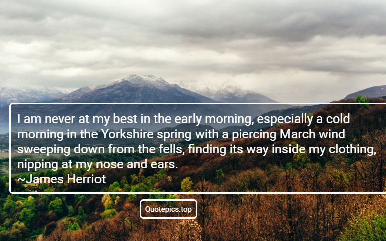 I am never at my best in the early morning, especially a cold morning in the Yorkshire spring with a piercing March wind sweeping down from the fells, finding its way inside my clothing, nipping at my nose and ears. ~James Herriot