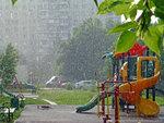 Грибной дождик на Авиаторов