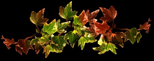 Мы с тобой,как осенние листья... ~ Плейкасты ~ Beesona.Ru