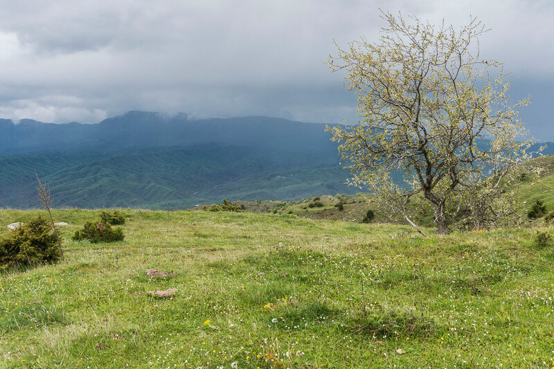 горы Северный Пинд, Греция