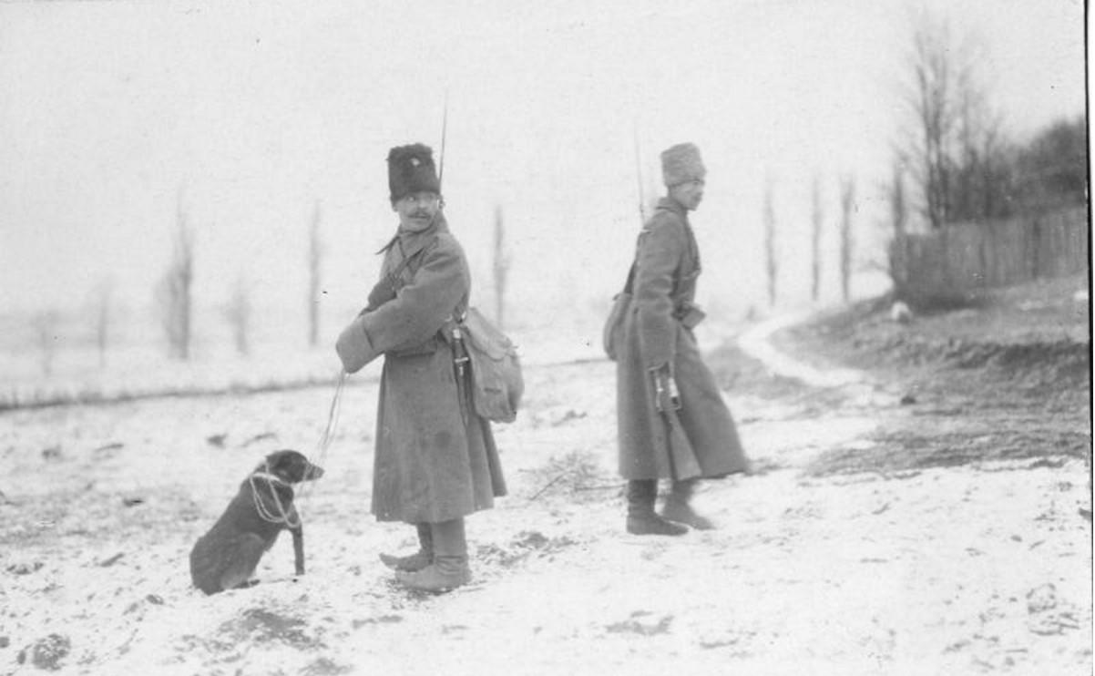 1915. Разведчики с собакой